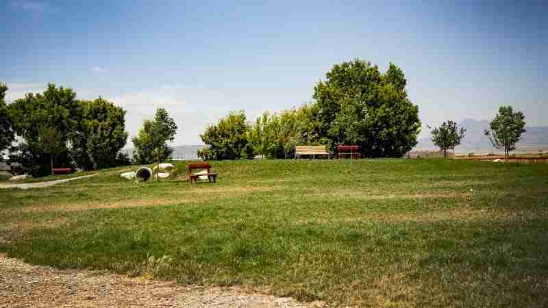 Cache Valley's largest off leash dog park at the Cache Humane Society